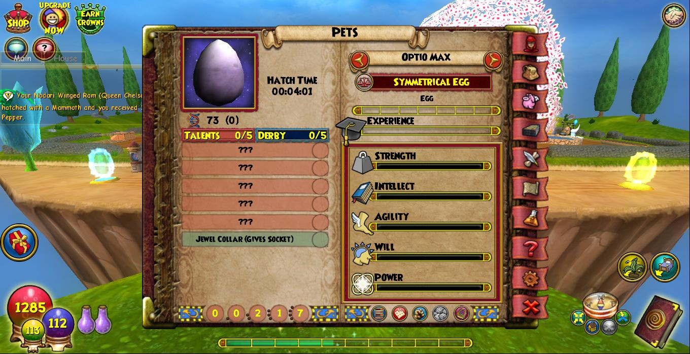 Wizard101 Petnome Project [licensed for non-commercial use